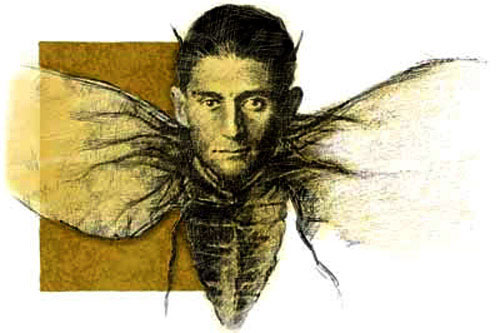 metamorphosis a novella by franz kafka english literature essay How to write a literary analysis essay 43  sample mla- style analysis essays  68  franz kafka's novella, the metamorphosis, begins as gregor samsa.