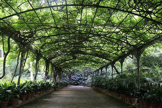 La Concepción Botanical Garden in Malaga