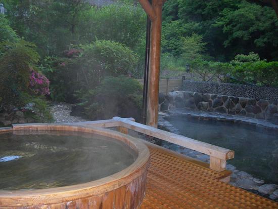 onsen tokyo