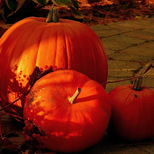 10 Travel Destinations for a Killer Halloween