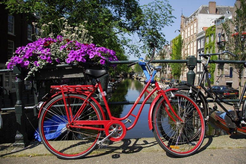 22 Reasons Why You'll Love Amsterdam